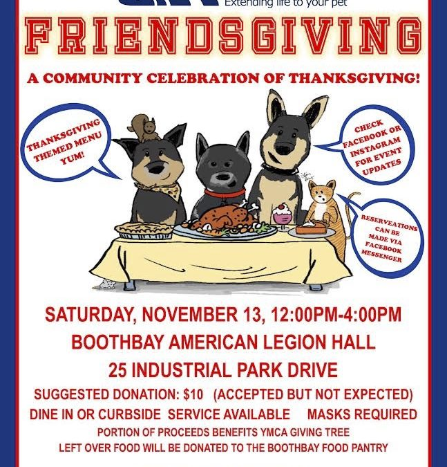 Friendsgiving – Action for Animals